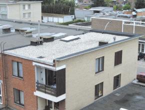 dakwerker platte daken