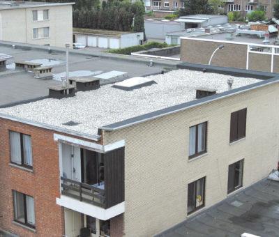 dakwerken platte daken